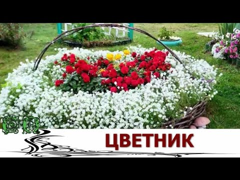 Цветник  Буйство красок у дома