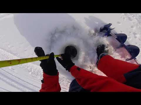 Lake Simcoe Ice Report Cooks Bay Keswick Gilford