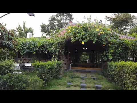 kalasan-tea-house---from-tea-master-to-tea-lovers