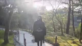 교토 은각사의 은각사 없는(?) 자연풍경 銀閣寺周辺の景…