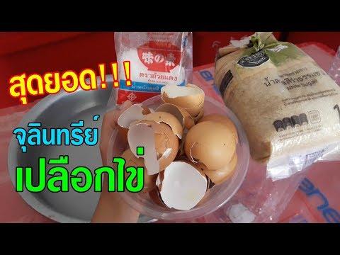 สุดยอด!!! จุลินทรีย์เปลือกไข่ ดูแลพืชผักให้เขียว โตไว ผักรสชาติหวานกรอบ