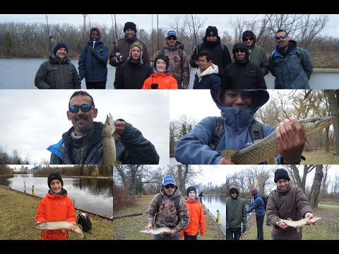 Toronto Fishing For Pike On The Toronto Islands - 2016