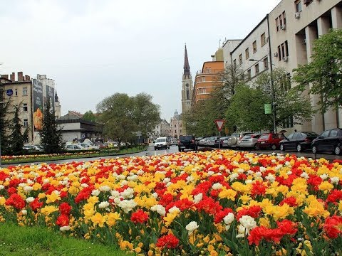 Best Place to Visit in Serbia, Novi Sad