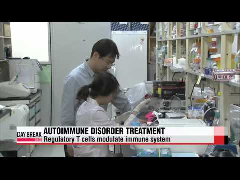 Researchers find key factors that could lead to autoimmunity treatment   자가면역질환