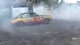 Eddie Rasta S.A Champ Spinner
