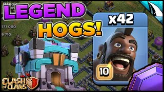 Mass HOGS at Town Hall 13! Wreck the bases on the ground! | Clash of Clans