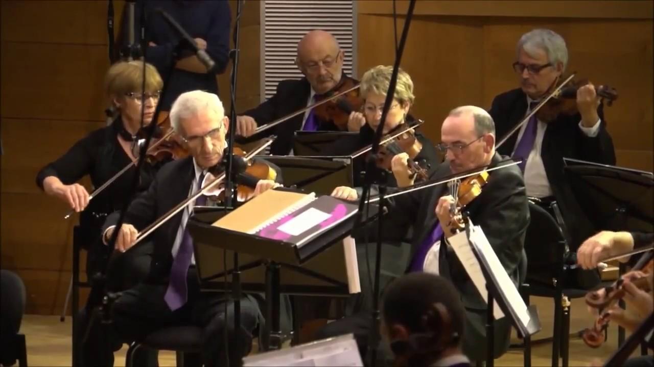 The Netanya Kibbutz Chamber Orchestra Maestro Samuel Elbaz Concerto for Mandolin