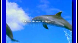 Smooth Jazz - Torcuato Mariano - All About You