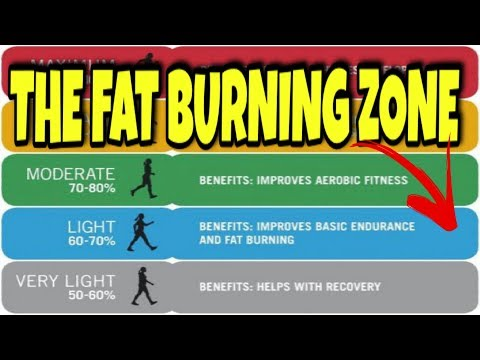 THE FAT BURNING ZONE  THE TRUTH