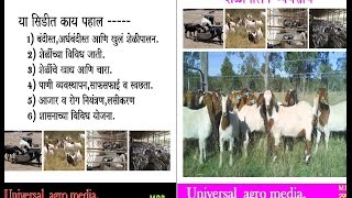 Shelipalan - Goat farming - शेळीपालन (Marathi)  M.S.Patil