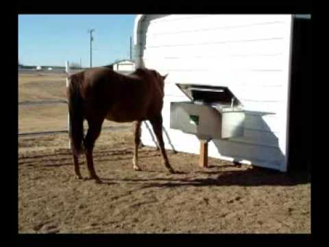 how to make automatic horse feeder