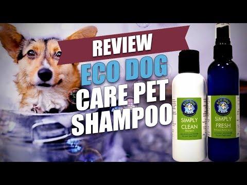 Eco Dog Care Pet Shampoo Review