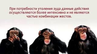 Обмани меня   Путин эпизод 4