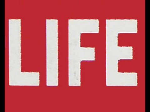 SCREEN GODDESSES: 40 Life covers