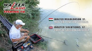 EPISODE 17: Maty-éri pontyok feederrel - Carps of Szeged, Maty-ér on the feeder