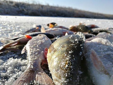 Открытие СУПЕР! Первый лед 2019-2020 на малой реке