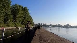 О рыбалке на Химкинском водохранилище 14 08 2021 г