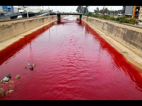 Lebanon 39 s beirut river mysteriously turns blood red for Blood in blood out mural la river