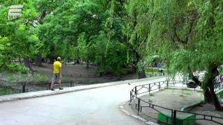 """Саратов. Городской парк """"Лукоморье"""". Май, 2015 год"""