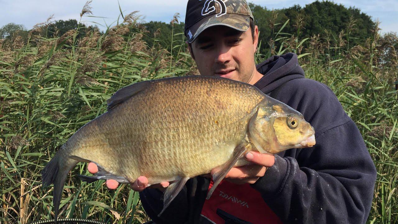Feeder Fishing For Bream On Stillwaters