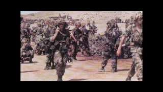 Война в Чечне 1994 1995 1996