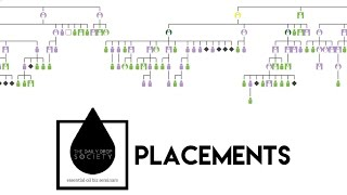 How to do Placements in doTERRA to have Real Time Freedom
