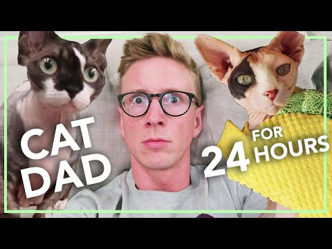 Becoming a CAT LADY for a Day (ft. Hannah Hart)