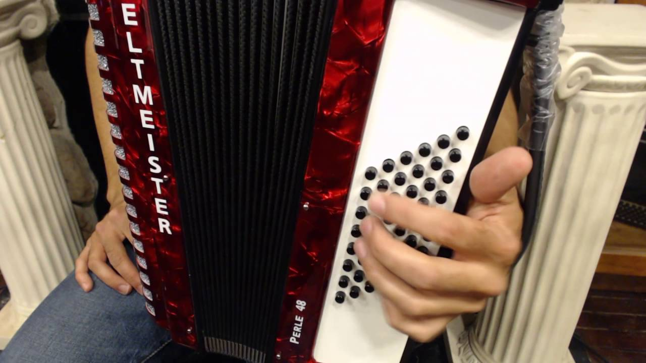 How to Play a 48 Bass Accordion - Lesson 8 - Blues and Rock Left Hand  Techniques