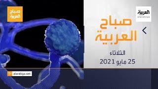 صباح العربية الحلقة الكاملة | كل ما يجب أن تعرفه عن