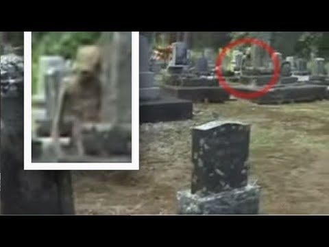 Bizarre 'Humanoid being' caught on camera hiding in cemetery