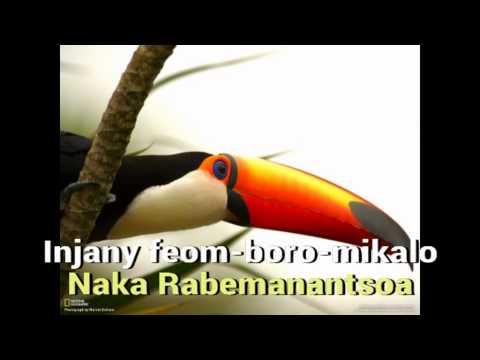 Naka Rabemanantsoa  Injany feom boro mikalo