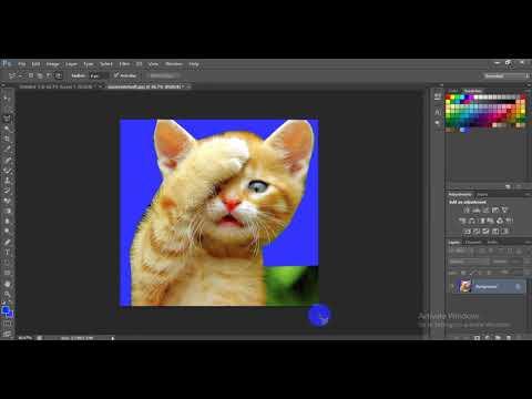 Cách cắt và ghép hình cơ bản trong Photoshop