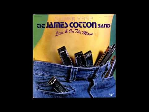 James Cotton   Rocket 88   YouTube