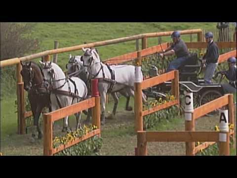 Alltech FEI World Equestrian Games 2014 in Normandy - Driving Presentation / Présentation Attelage
