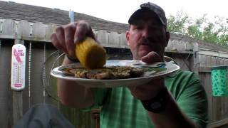Solaire Anywhere Portable Infrared Grilled Pork Chops & Corn On The Cob