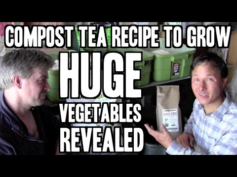 Compost Tea Recipe to Grow BIG Vegetables Revealed