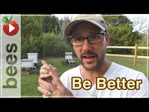 The Best Beekeeping - DO THIS to be a BETTER BEEKEEPER!