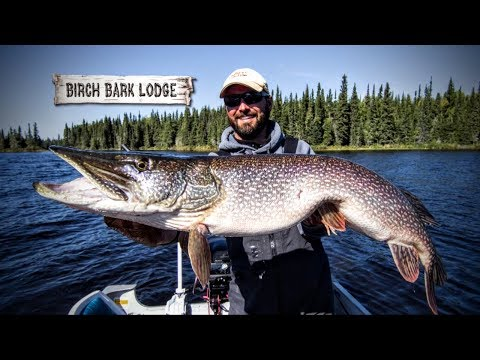 Fly-In Fishing In Canada — Fishing Edge TV