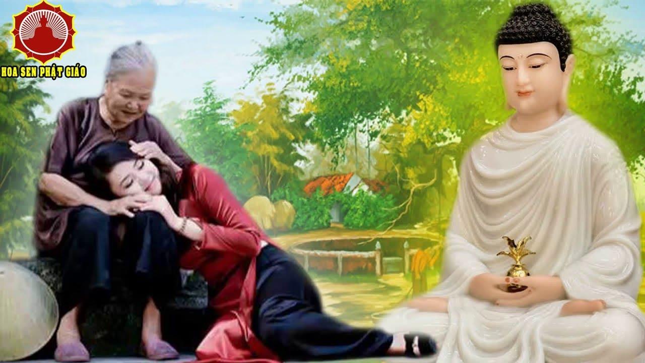 Bạn SẼ KHÓC Khi Nghe CÔNG ƠN CHA MẸ – Lời Phật Dạy Cách Báo Hiếu Cha Mẹ