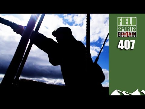 Fieldsports Britain - Fastest Birds You Can Shoot