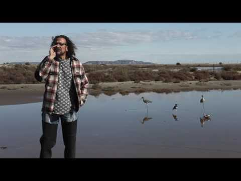Imiter 10 oiseaux avec le sifflet Apo-Gé