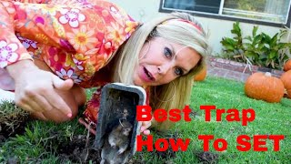 How to Kill Gophers | Mackabee vs Victor Gopher Traps BEST METHOD