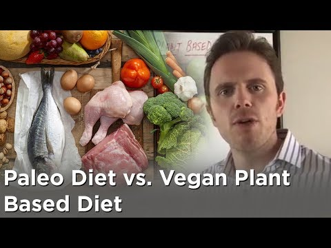 paleo v plant based Plant-based and paleo eating patterns are taking the world by storm and are arguably the most popular diets/ eating patterns right now what is ironic, is that these.