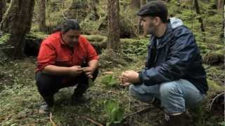 Venison Skewers: Traditional Foods, Contemporary Chef Southeast Alaska