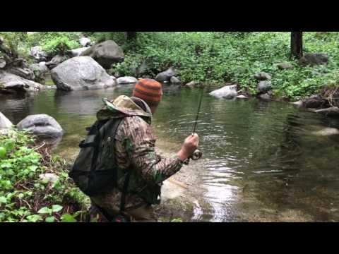 2017 Southern California Wild Trout Angeles National Forest, dry fly