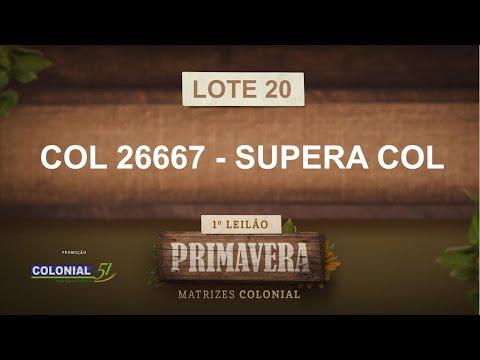 LOTE 20   COL 26667