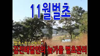 초겨울 벌초를 진행하는 김진태묘지전문가