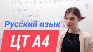 ЦТ по русскому А4. Как решать