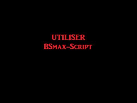 bsmax script