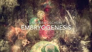 Xavier Boscher - Teaser Embryogenesis #2